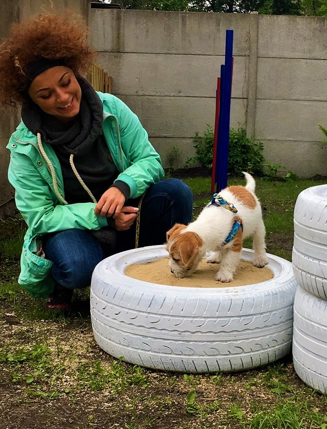 szkolenie psów Tarnowskie Góry
